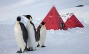 30 anni di ricerca in Antartide