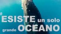 World Oceans Day: i nostri oceani, il nostro futuro