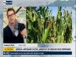 Italia: il 2017 l'anno piu' secco dal 1800