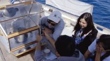 Lab boat - navigare con la scienza