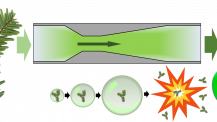 Cavitazione idrodinamica trasforma gli aghi di abete in una soluzione antiossidante