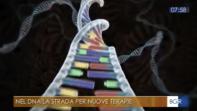 Nel DNA la strada per nuove terapie