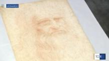 Il microbioma dei disegni di Leonardo