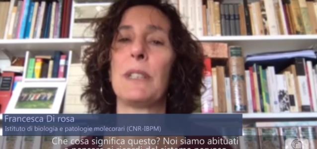 Francesca Di Rosa